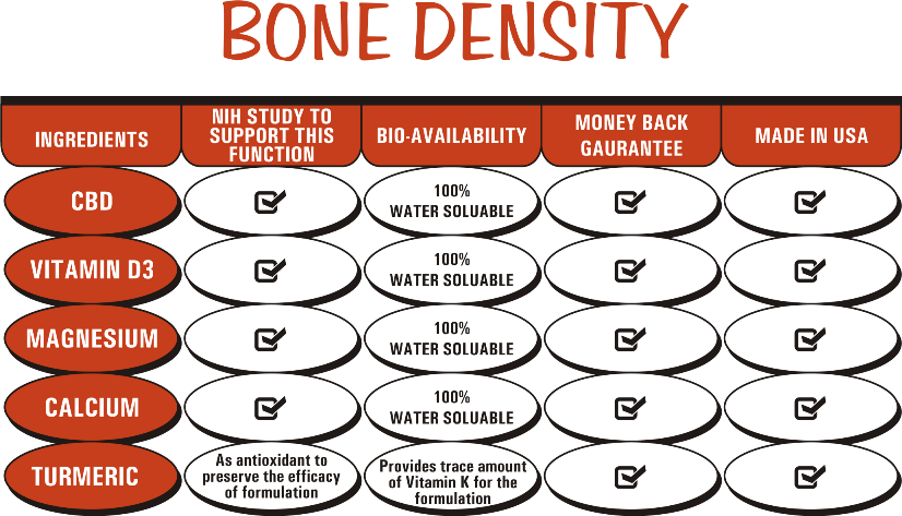 CBD For Bone Density